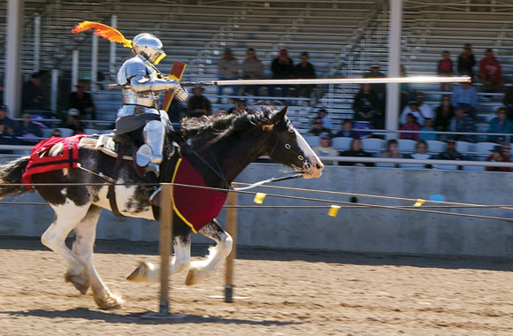 Jouster galloping down the list